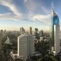 Дуб Джакарта 3-х полосный от Farecom (Фареком)